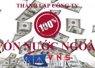 doanh-nghiep-100-von-dau-tu-nuoc-ngoai