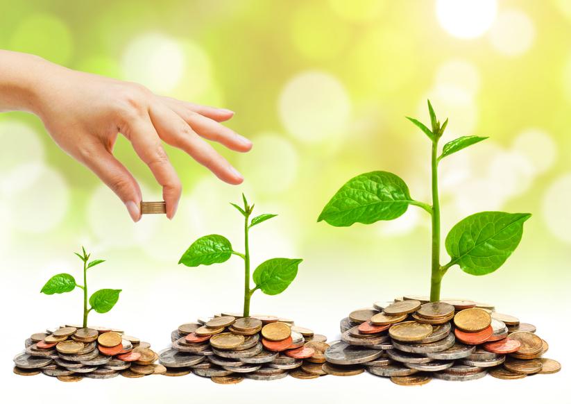 Điều chỉnh giấy chứng nhận đầu tư ở hạng mục vốn