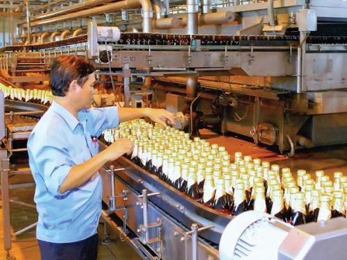 Quy trình sản xuất rượu phải đảm bảo tiêu chuẩn kỹ thuật
