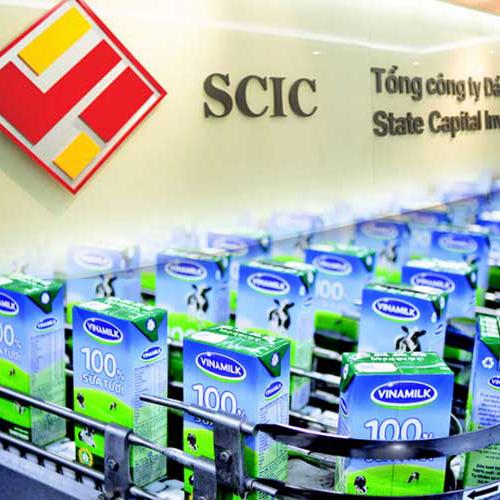 Vấn đề thoái vốn của SCIC ảnh hưởng gì đến Vinamilk