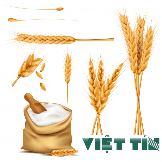 Công bố sản phẩm ngũ cốc dinh dưỡng tại Luật Việt Tín