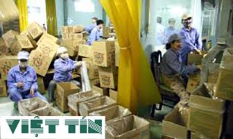 Đóng gói sản phẩm nhập khẩu đơn giản cùng Luật Việt Tín